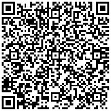 lingual consultancy services